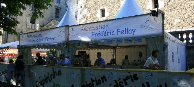 Juin 2014 – Fête de la Musique – Ville de Genève